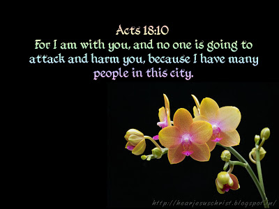 acts 18-10