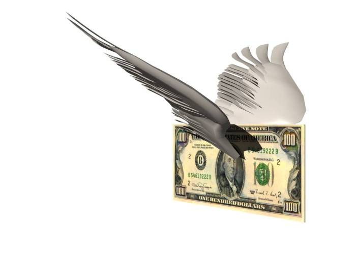 money-with-wings