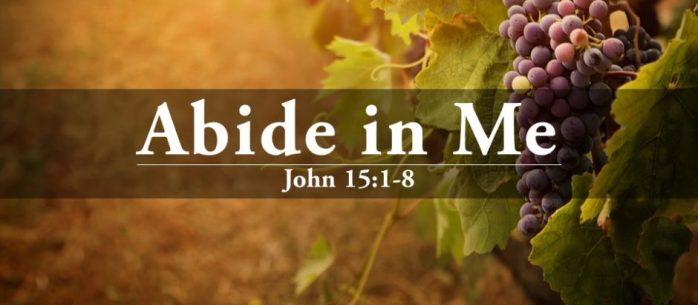John15_1-8