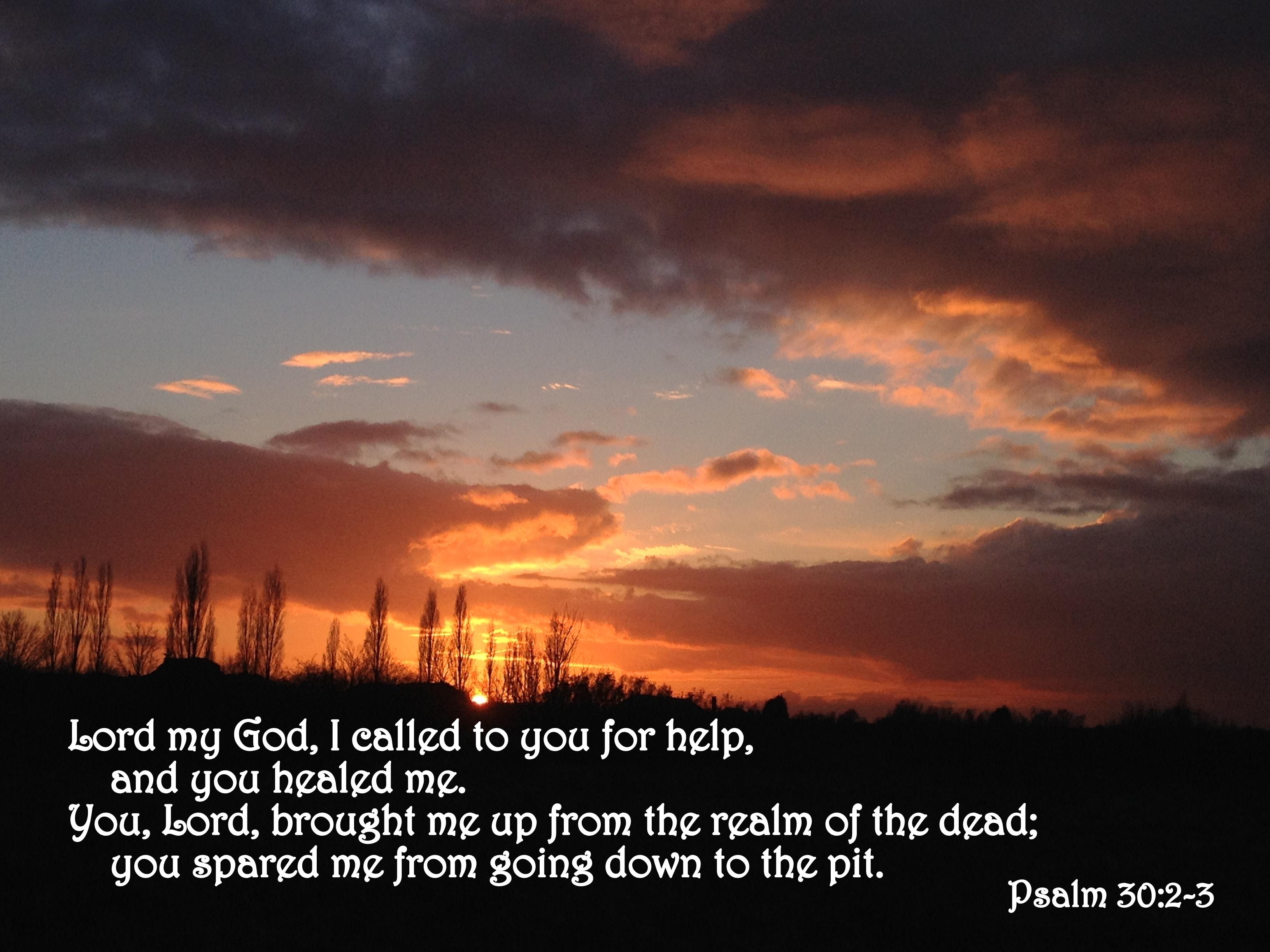 psalm-30-2-3