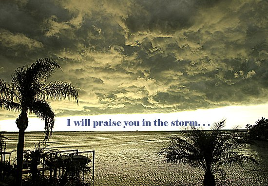 I will Praise you in the storm.jpg